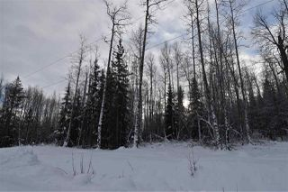 "Photo 32: 9 3000 DAHLIE Road in Smithers: Smithers - Rural Land for sale in ""Mountain Gateway Estates"" (Smithers And Area (Zone 54))  : MLS®# R2280461"