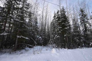 "Photo 21: 9 3000 DAHLIE Road in Smithers: Smithers - Rural Land for sale in ""Mountain Gateway Estates"" (Smithers And Area (Zone 54))  : MLS®# R2280461"
