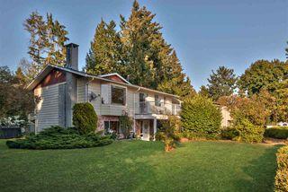 Main Photo: 20801 STONEY Avenue in Maple Ridge: Southwest Maple Ridge House for sale : MLS®# R2305389