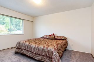 Photo 15: 11775 260 Street in Maple Ridge: Websters Corners House for sale : MLS®# R2309351