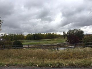 Main Photo: 31 - 51025 Rge Rd 222: Rural Strathcona County Rural Land/Vacant Lot for sale : MLS®# E4136585