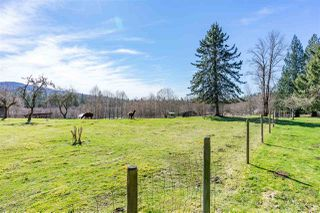 "Photo 16: 4915 SUMAS MOUNTAIN Road in Abbotsford: Sumas Mountain House for sale in ""Sumas Mountain"" : MLS®# R2353641"