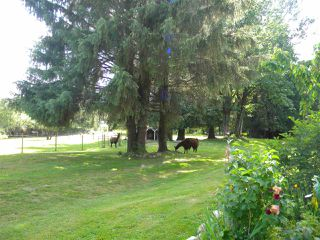 "Photo 14: 4915 SUMAS MOUNTAIN Road in Abbotsford: Sumas Mountain House for sale in ""Sumas Mountain"" : MLS®# R2353641"