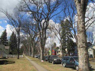 Photo 19: 9715 84 Avenue in Edmonton: Zone 15 House for sale : MLS®# E4151584