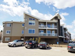 Photo 22: 302 279 Wye Road Road: Sherwood Park Condo for sale : MLS®# E4153779
