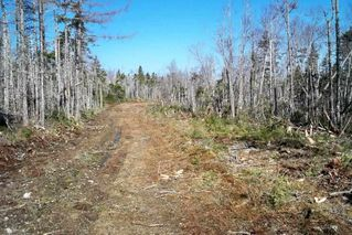 Main Photo: Block VK1 Debaie's Cove Road in Debaie's Cove: 35-Halifax County East Vacant Land for sale (Halifax-Dartmouth)  : MLS®# 201909377
