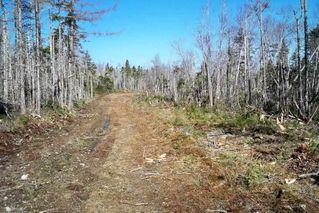 Main Photo: Block VK1 Debaie's Cove Road in Debaie's Cove: 35-Halifax County East Vacant Land for sale (Halifax-Dartmouth)  : MLS®# 201909377