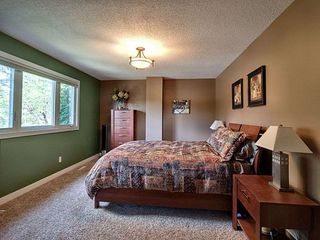 Photo 17: 12303 39 Avenue in Edmonton: Zone 16 House for sale : MLS®# E4162283