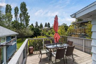 Photo 31: 1331 Vining Street in VICTORIA: Vi Fernwood Single Family Detached for sale (Victoria)  : MLS®# 412868