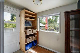 Photo 10: 1331 Vining Street in VICTORIA: Vi Fernwood Single Family Detached for sale (Victoria)  : MLS®# 412868