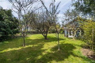 Photo 35: 1331 Vining Street in VICTORIA: Vi Fernwood Single Family Detached for sale (Victoria)  : MLS®# 412868