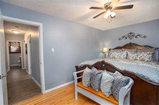 Photo 19: 252 EVERGREEN Street: Sherwood Park House for sale : MLS®# E4183841