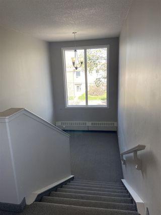 Photo 15: 303 11827 105 Street in Edmonton: Zone 08 Condo for sale : MLS®# E4196544