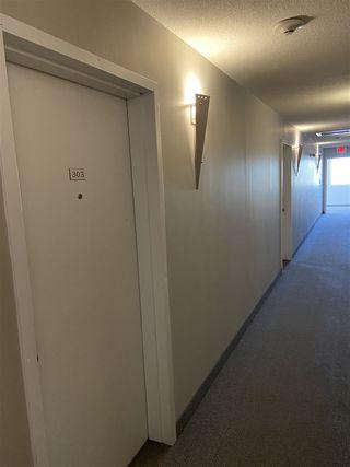Photo 14: 303 11827 105 Street in Edmonton: Zone 08 Condo for sale : MLS®# E4196544