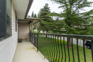 "Photo 24: 35430 ROCKWELL Drive in Abbotsford: Abbotsford East House for sale in ""east abbotsford"" : MLS®# R2468374"