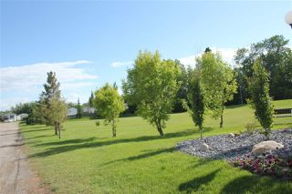 Photo 19: 2924 Lakewood Drive in Edmonton: Zone 59 Mobile for sale : MLS®# E4191316