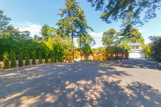 Photo 4: 4679 Leyns Pl in : SE Gordon Head Single Family Detached for sale (Saanich East)  : MLS®# 854008