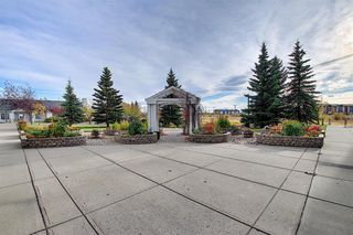 Photo 40: 102 305 1 Avenue NW: Airdrie Apartment for sale : MLS®# A1041463