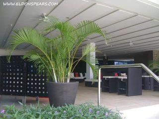 Photo 16: Condo for sale in the Luxurious Resort of Playa Bonita