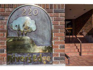 Photo 18: 102 220 26 Avenue SW in Calgary: Mission Condo for sale : MLS®# C3640075
