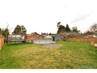 Photo 4: 821 Tulip Ave in VICTORIA: SW Marigold House for sale (Saanich West)  : MLS®# 721237
