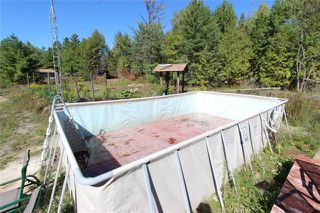 Photo 17: 275 Somerville Conc 7 Road in Kawartha Lakes: Rural Somerville House (Other) for sale : MLS®# X3605467