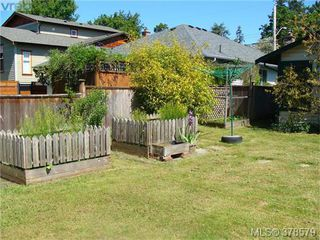 Photo 14: 733 Miller Avenue in VICTORIA: SW Royal Oak Single Family Detached for sale (Saanich West)  : MLS®# 378579