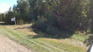Photo 10: 8 50410 RGE RD 275 Road: Rural Parkland County Rural Land/Vacant Lot for sale : MLS®# E4081437