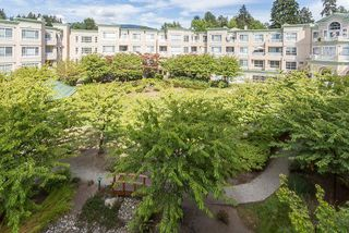 """Photo 14: 329 2995 PRINCESS Crescent in Coquitlam: Canyon Springs Condo for sale in """"PRINCES GATE"""" : MLS®# R2238255"""