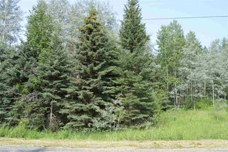 Photo 3: LOT B PRITCHARD Road in Williams Lake: Williams Lake - Rural East Land for sale (Williams Lake (Zone 27))  : MLS®# R2290164