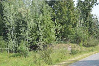 Photo 5: LOT B PRITCHARD Road in Williams Lake: Williams Lake - Rural East Land for sale (Williams Lake (Zone 27))  : MLS®# R2290164