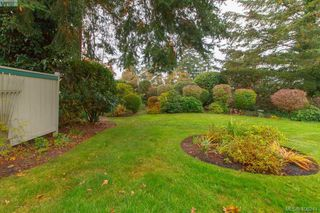 Photo 38: 7 520 Marsett Pl in VICTORIA: SW Royal Oak Row/Townhouse for sale (Saanich West)  : MLS®# 807296