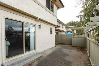 Photo 24: 19 4061 Larchwood Dr in VICTORIA: SE Lambrick Park Row/Townhouse for sale (Saanich East)  : MLS®# 808408