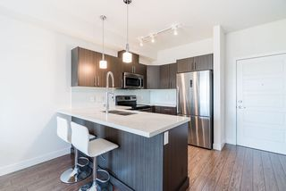 """Photo 3: 406 12070 227 Street in Maple Ridge: East Central Condo for sale in """"STATION ONE"""" : MLS®# R2369187"""