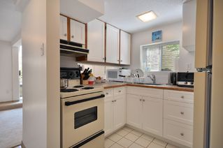 Photo 14: 1570 West 64th Ave in Vancouver: Home for sale : MLS®# V890062