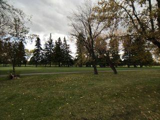 Photo 19: 43 Fairway Drive in Edmonton: Zone 16 House for sale : MLS®# E4162628