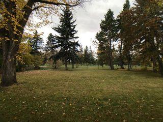 Photo 11: 43 Fairway Drive in Edmonton: Zone 16 House for sale : MLS®# E4162628