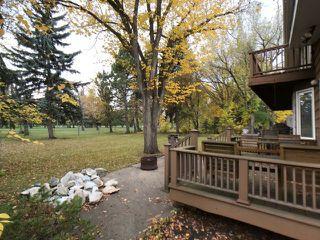 Photo 13: 43 Fairway Drive in Edmonton: Zone 16 House for sale : MLS®# E4162628