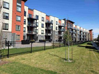 Photo 37: 216 320 AMBLESIDE Link in Edmonton: Zone 56 Condo for sale : MLS®# E4197599