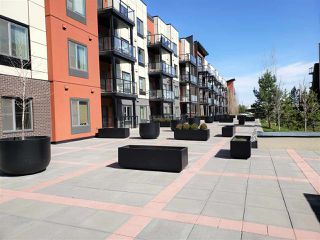 Photo 35: 216 320 AMBLESIDE Link in Edmonton: Zone 56 Condo for sale : MLS®# E4197599