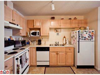 """Photo 7: 509 12101 80 Avenue in Surrey: Queen Mary Park Surrey Condo for sale in """"SURREY TOWN MANOR"""" : MLS®# F1109543"""