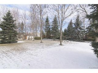 Photo 16: 209 TERRANCE Place in WINNIPEG: Birdshill Area Residential for sale (North East Winnipeg)  : MLS®# 1507760