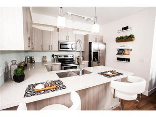 """Photo 5: 302 12070 227 Street in Maple Ridge: East Central Condo for sale in """"STATION ONE"""" : MLS®# V1127822"""