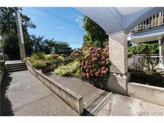 Photo 20: 104 1028 Balmoral Rd in VICTORIA: Vi Central Park Condo for sale (Victoria)  : MLS®# 742330