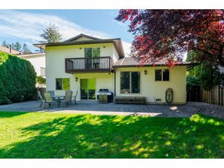 "Photo 19: 20489 TELEGRAPH Trail in Langley: Walnut Grove House for sale in ""WALNUT GROVE"" : MLS®# R2107399"
