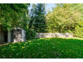 """Photo 20: 20489 TELEGRAPH Trail in Langley: Walnut Grove House for sale in """"WALNUT GROVE"""" : MLS®# R2107399"""