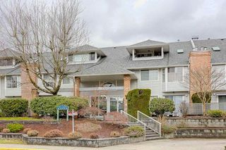 "Photo 1: 109 11578 225 Street in Maple Ridge: East Central Condo for sale in ""THE WILLOWS"" : MLS®# R2138956"