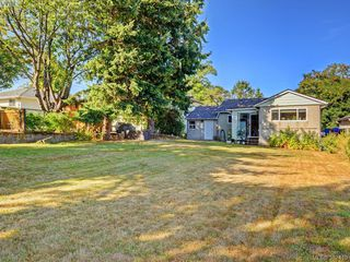 Photo 19: 3131 Jackson St in VICTORIA: Vi Mayfair House for sale (Victoria)  : MLS®# 768358