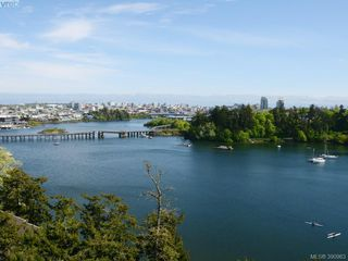 Photo 12: 508 105 E Gorge Rd in VICTORIA: Vi Burnside Condo for sale (Victoria)  : MLS®# 785851