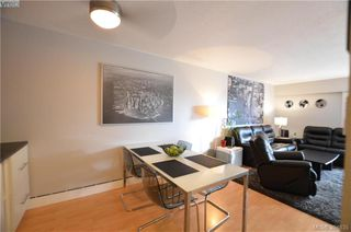 Photo 13: 326 1870 McKenzie Avenue in VICTORIA: SE Lambrick Park Condo Apartment for sale (Saanich East)  : MLS®# 394635